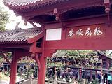 岳阳旅游景点攻略图片