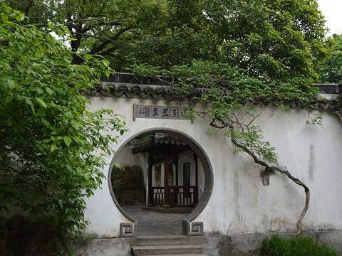 虎丘旅游景点图片