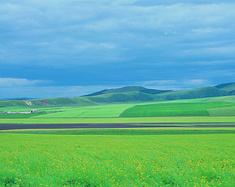 意外比明天先来,去苍茫的草原寻我的爱——呼伦贝尔草原行