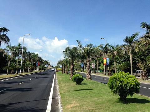 鼓浪屿环岛路的图片