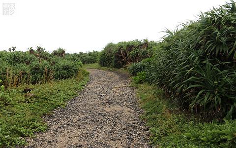 龙坑生态保护区旅游景点攻略图