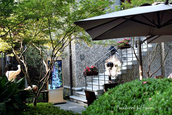 """""""思南路有二十几幢花园式洋房,集中了老上海近乎全部的民居样式,这里有著名的周公馆和孙中山故居。_思南路""""的评论图片"""