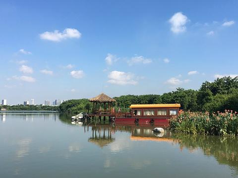 海珠湿地旅游景点攻略图