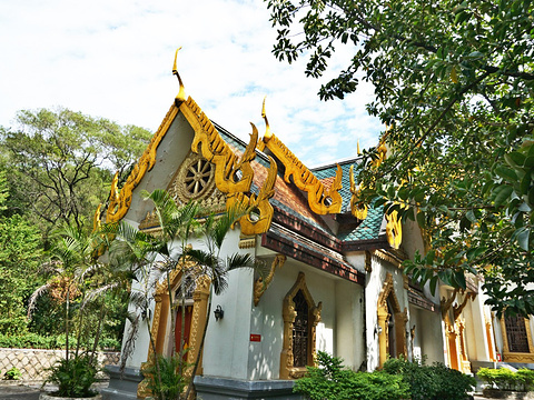 泰佛殿旅游景点图片