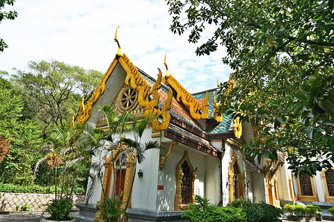 泰佛殿的图片