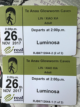 Te Anau Glowworm Caves旅游景点攻略图