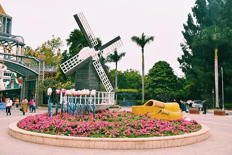 荷兰花卉小镇旅游景点攻略图