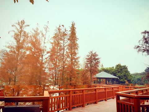 花都湖旅游景点图片