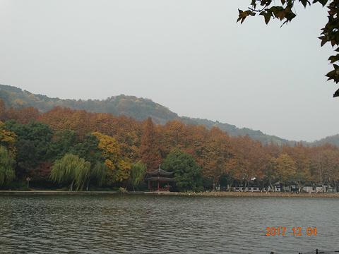 中山公园的图片