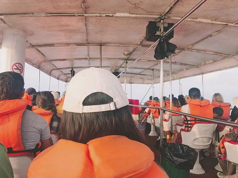 美蕊沙出海观鲸旅游景点攻略图