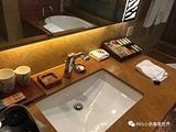 长隆酒店(广州长隆野生动物世界店)