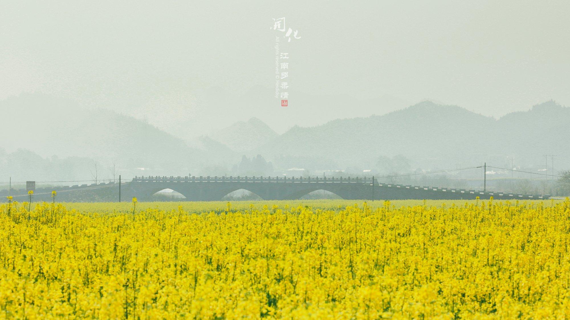 【海蒂手记】江南多柔情之浙西赣北春游记