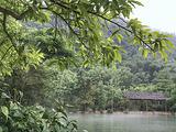 仙桃旅游景点攻略图片
