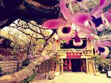 德宏旅游景点攻略图片