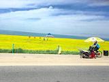 左贡旅游景点攻略图片