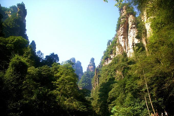 金鞭溪(3.5-4小时)图片