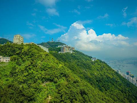 太平山顶旅游景点图片