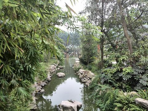 乐山大佛旅游景点图片