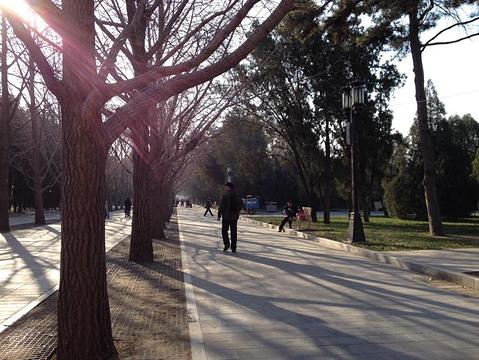 地坛公园旅游景点攻略图