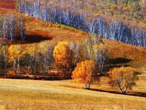 长白山南坡景区旅游景点图片
