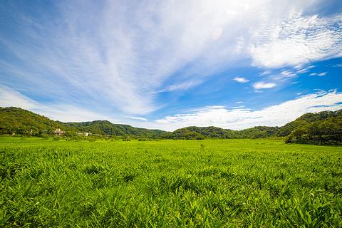 知本温泉旅游景点攻略图