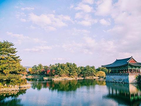 东宫与月池旅游景点图片