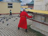 乌兰巴托旅游景点攻略图片