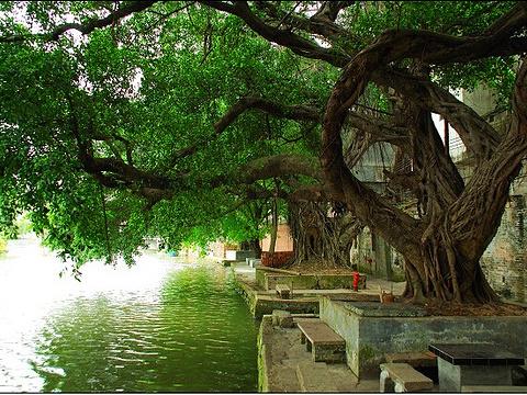 岭南水乡旅游景点图片