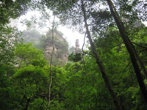 藏经殿旅游景点图片