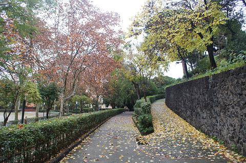 巴贝里尼广场旅游景点攻略图