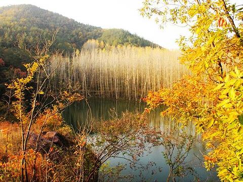 美人谷旅游景点图片