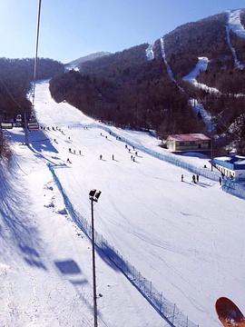 亚布力新体委滑雪场的图片