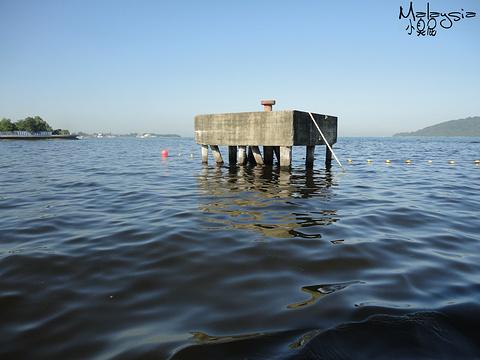 哲斯顿港码头旅游景点图片