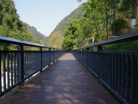 南郊公园旅游景点图片