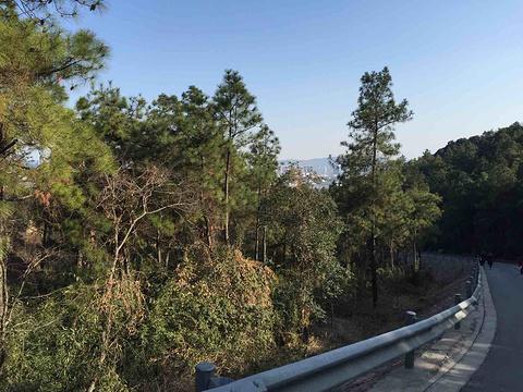 天平山旅游景点攻略图