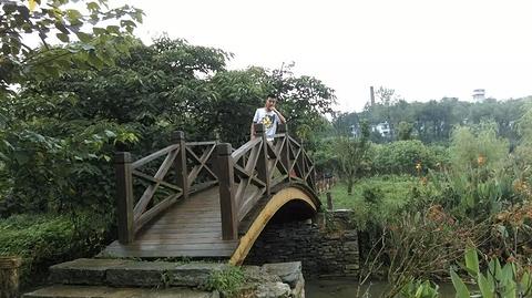 花溪公园旅游景点攻略图