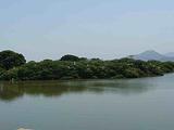 米埔野生动物保护区