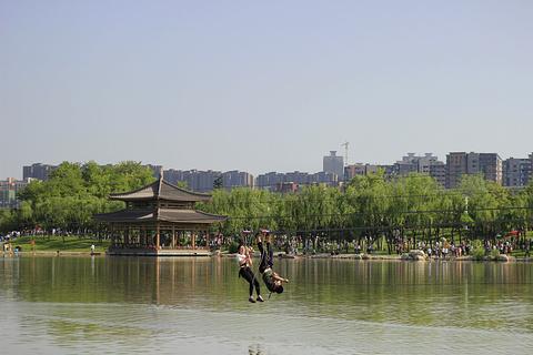 曲江池遗址公园旅游景点攻略图