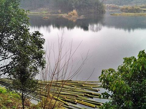 夷望溪旅游景点图片