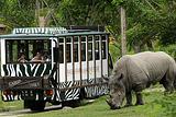 普吉岛动物园