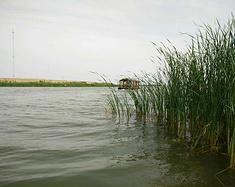 衡水湖一日游