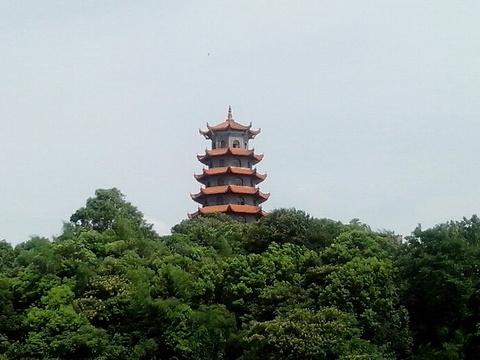 宝塔岭高峰塔旅游景点图片