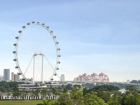 新加坡摩天观景轮旅游景点图片