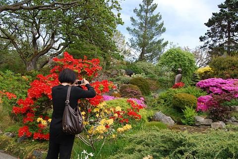 阿布哈兹花园旅游景点攻略图