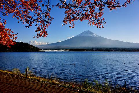 富士河口湖町旅游景点图片