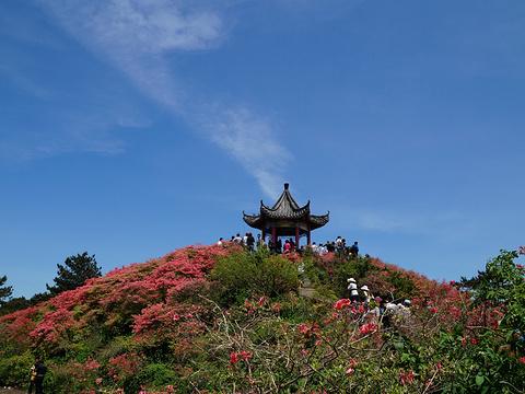 龟峰山旅游景点图片