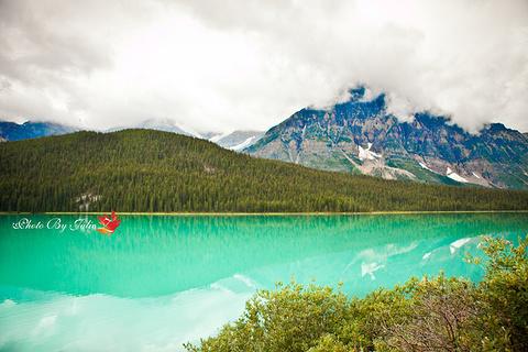 Waterfowl lake旅游景点攻略图
