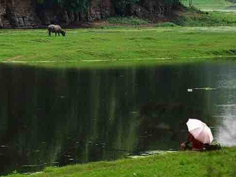 长滩湖旅游景点图片