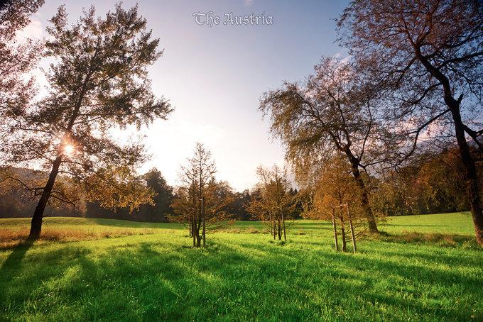美丽风景图片