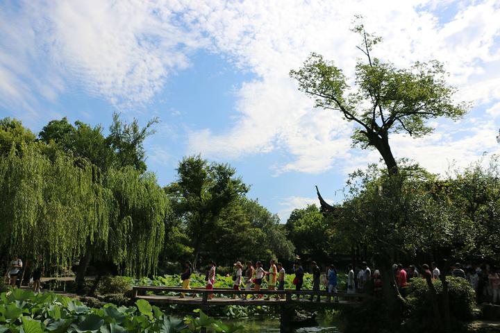 """""""拙政园占地七八十亩,面积不大,景区内的景色却非常精致。【拙政园】江南古典园林的代表_拙政园""""的评论图片"""